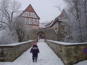 Burg Bodenstein Januar 2009